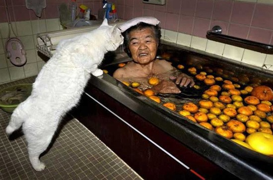 woman-bath-cat